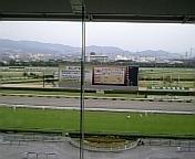またまた阪神競馬