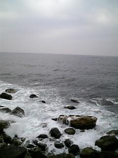 日本海かな?